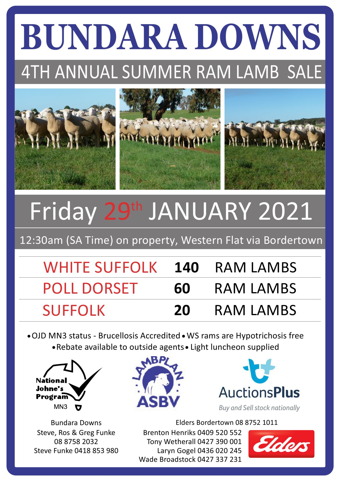 2020 Annual Summer Ram Lamb Sale